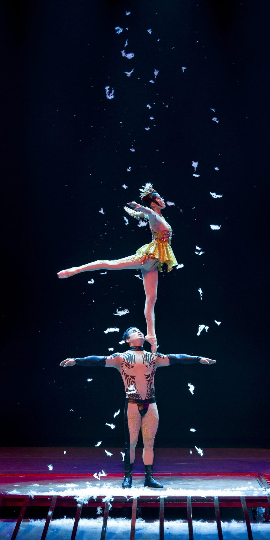 Gran Circo Acrobático de China 13