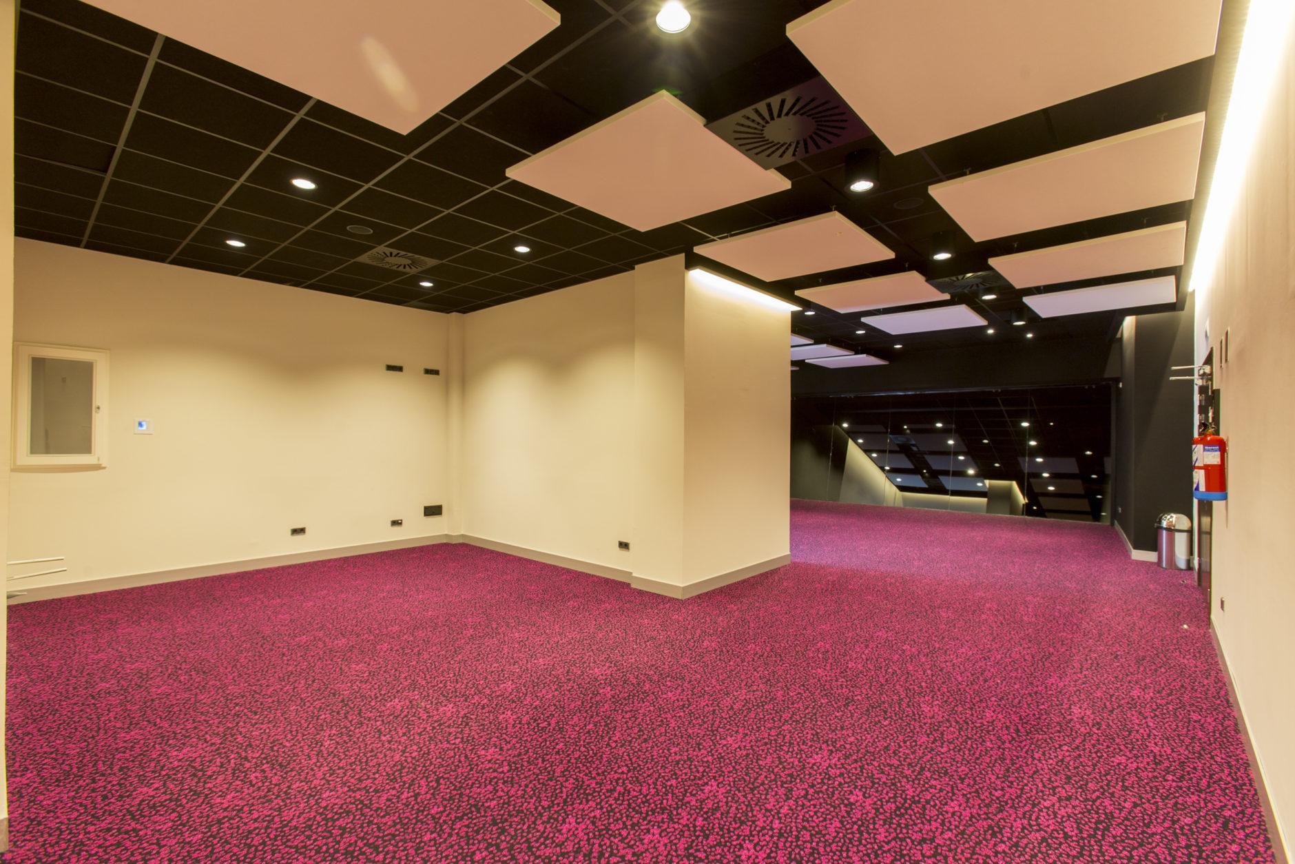 Salas VIP 1