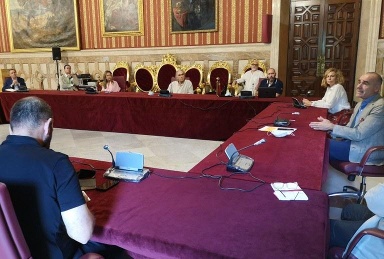 El Ayuntamiento y entidades culturales de Sevilla mantienen un encuentro de trabajo para avanzar en una agenda cultural conjunta y variada de cara a los meses de verano 1